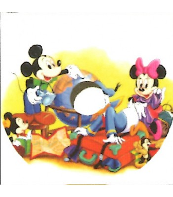 24 Inch Disney Design Spoke Guard