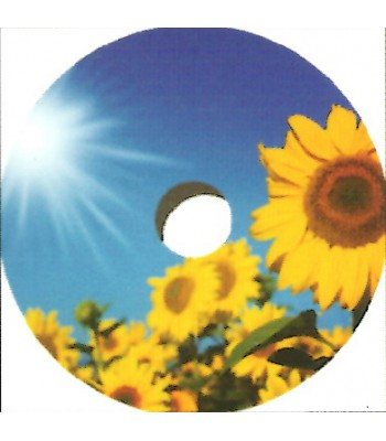 22 Inch Sunflower Design Spoke Guard