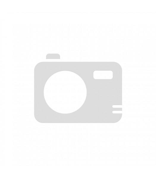 Coyote Shimano 7 Manual Handcycle